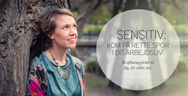 Sensitiv: Kom på rette spor i dit arbejdsliv